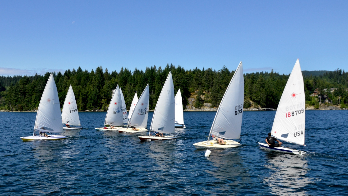 Race Start of the 6th Annual Poise Cove Regatta July 16th, 2017