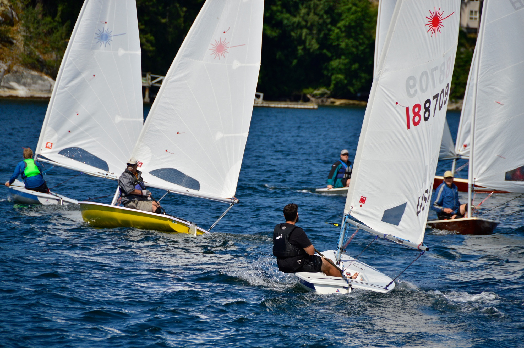 Lasers staging for the start of the race at The 6th Annual Poise Cove Regatta July 16th, 2017